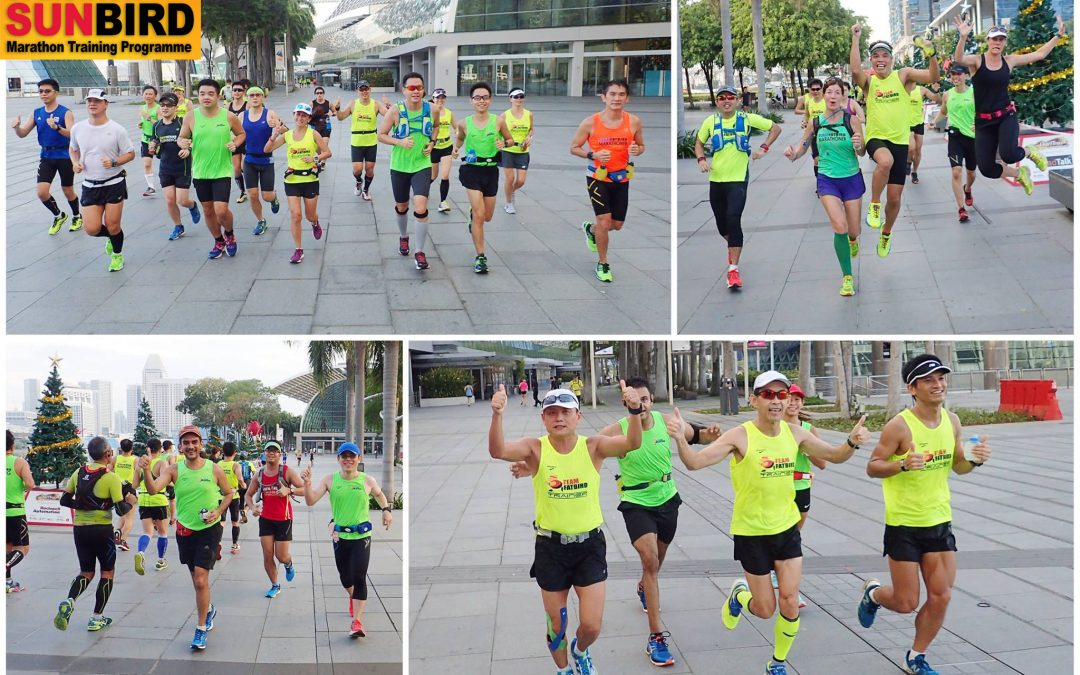 OPERATION SUNBIRD 2016: Marathon Training For Standard Chartered Marathon Singapore (SCMS)
