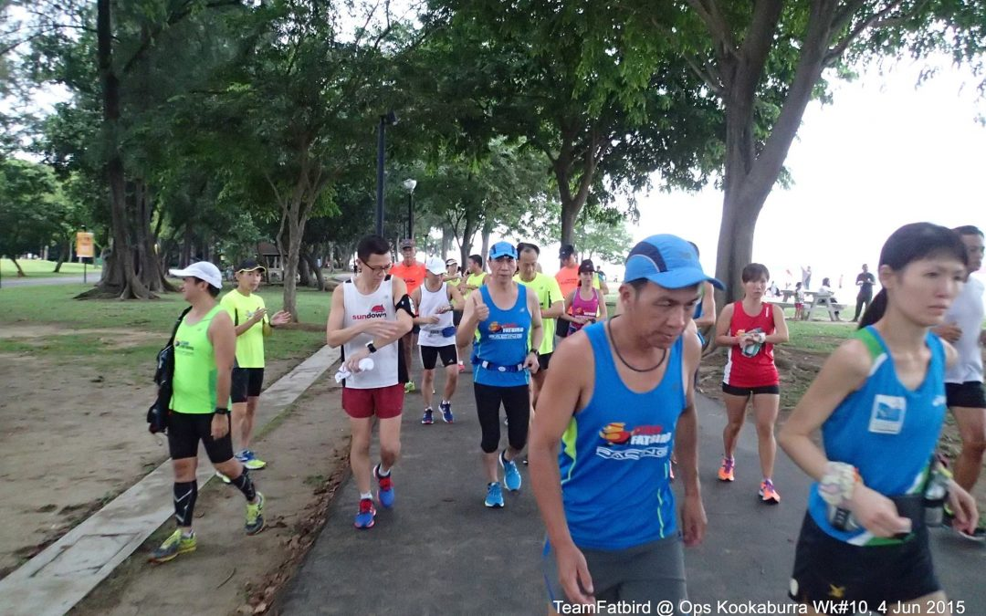 Gold Coast Marathon 2016: Longest Training Run