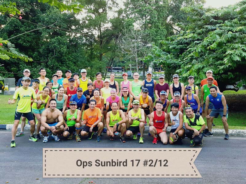 Sunbirds Beat The Trails & Slopes Of MacRitchie Reservoir